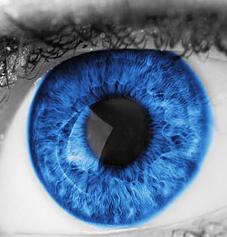 eyeball_edited-1
